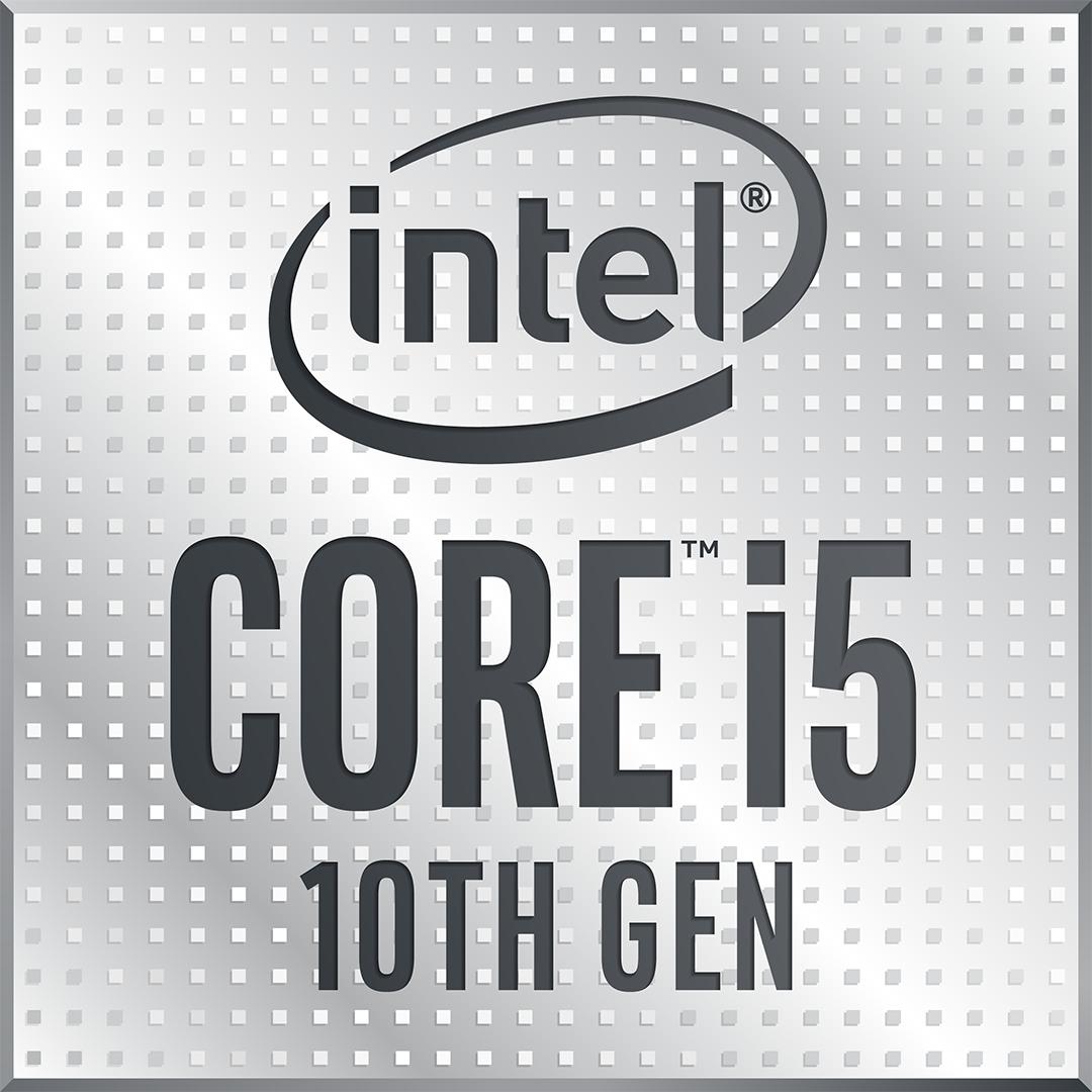 Socket 1200 : Core i5-10600