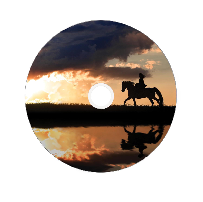 DVD+R 8,5 GB 8 speed (bedrukbaar, 25-spindel)