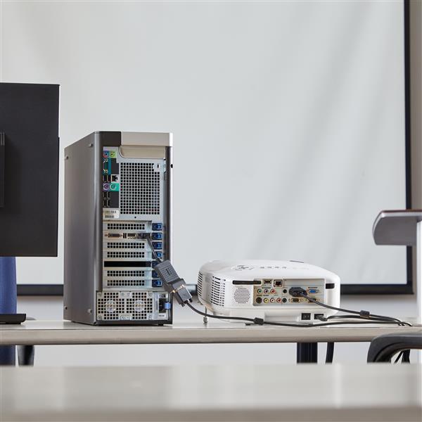 DisplayPort naar VGA Video Adapter